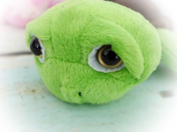 Schildkröte Sally