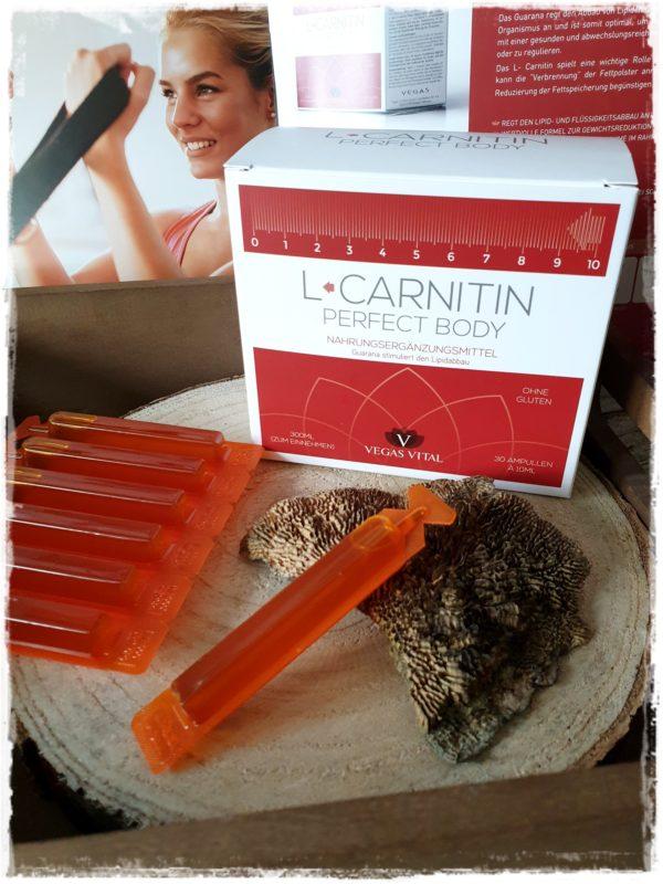 L-Carnitin Pefect Body